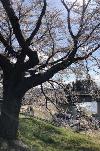 Ogawara River